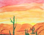 Turtles Desert